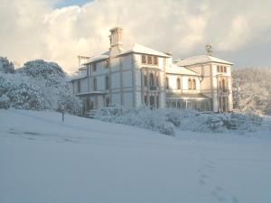 The Bedrooms at Falcondale Mansion Hotel