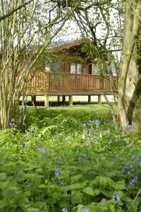 The Bedrooms at South Winchester Lodges